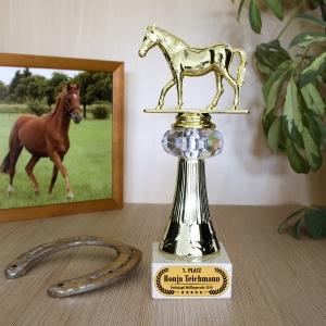 Für Pferdenarren ein super Geschenk